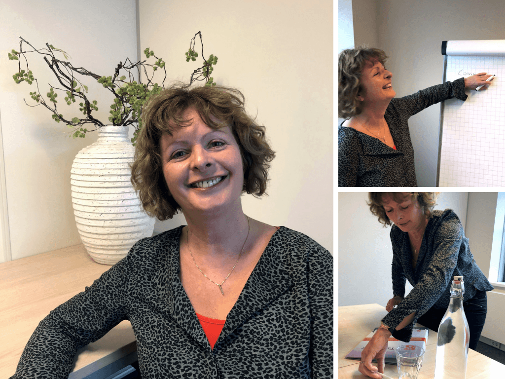 Karin Sanders, taaltrainer Engels, De Taaltrainer