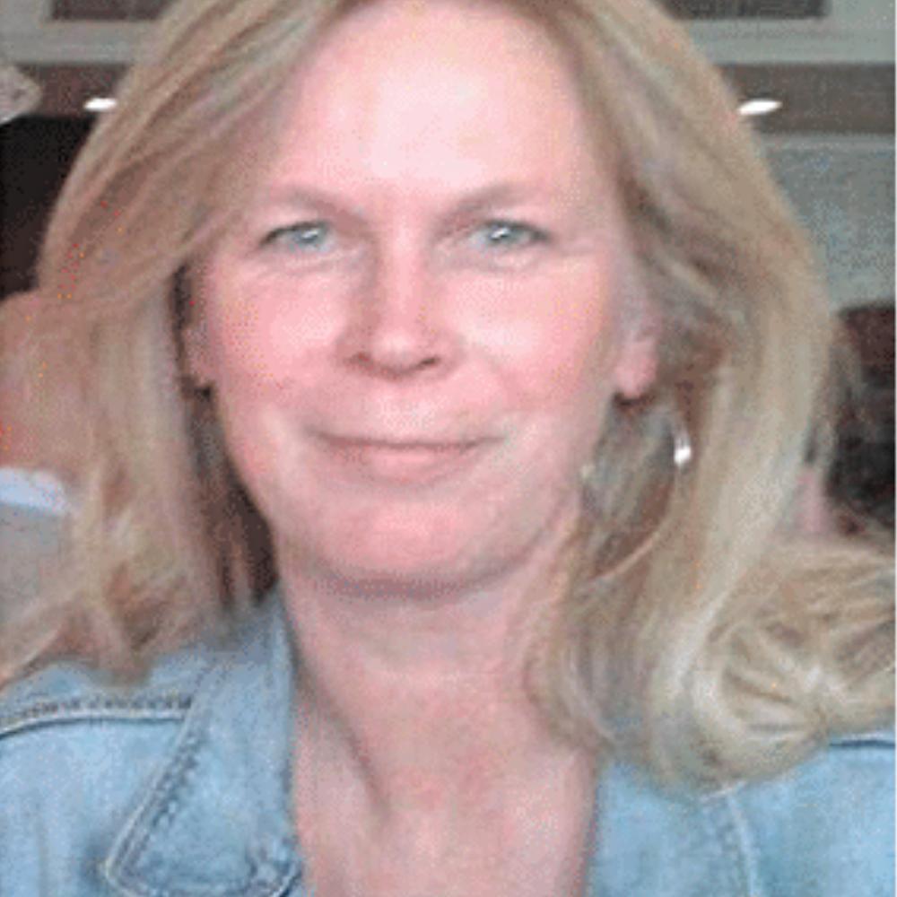 Ellen Scholten, Taaltrainer Nederlands NT1 De Taaltrainer